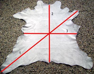 Meten rendierhuid in beeld